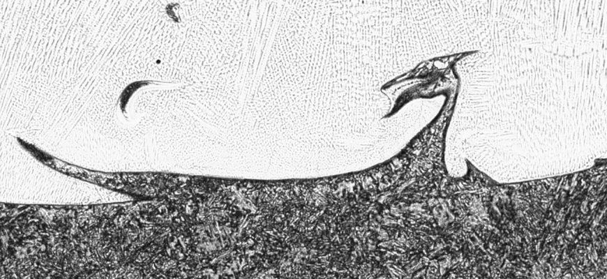 """Kurioses: """"Nessie"""" gefunden im Schweißgut einer austenitischen Auftragsschweißung (Schweißplattierung)"""